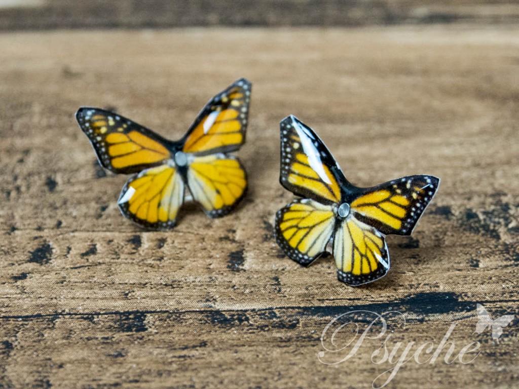 オオカバマダラ 蝶の標本ピアス(ペア)