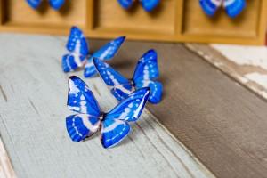 キプリスモルフォ 蝶の標本ピアス