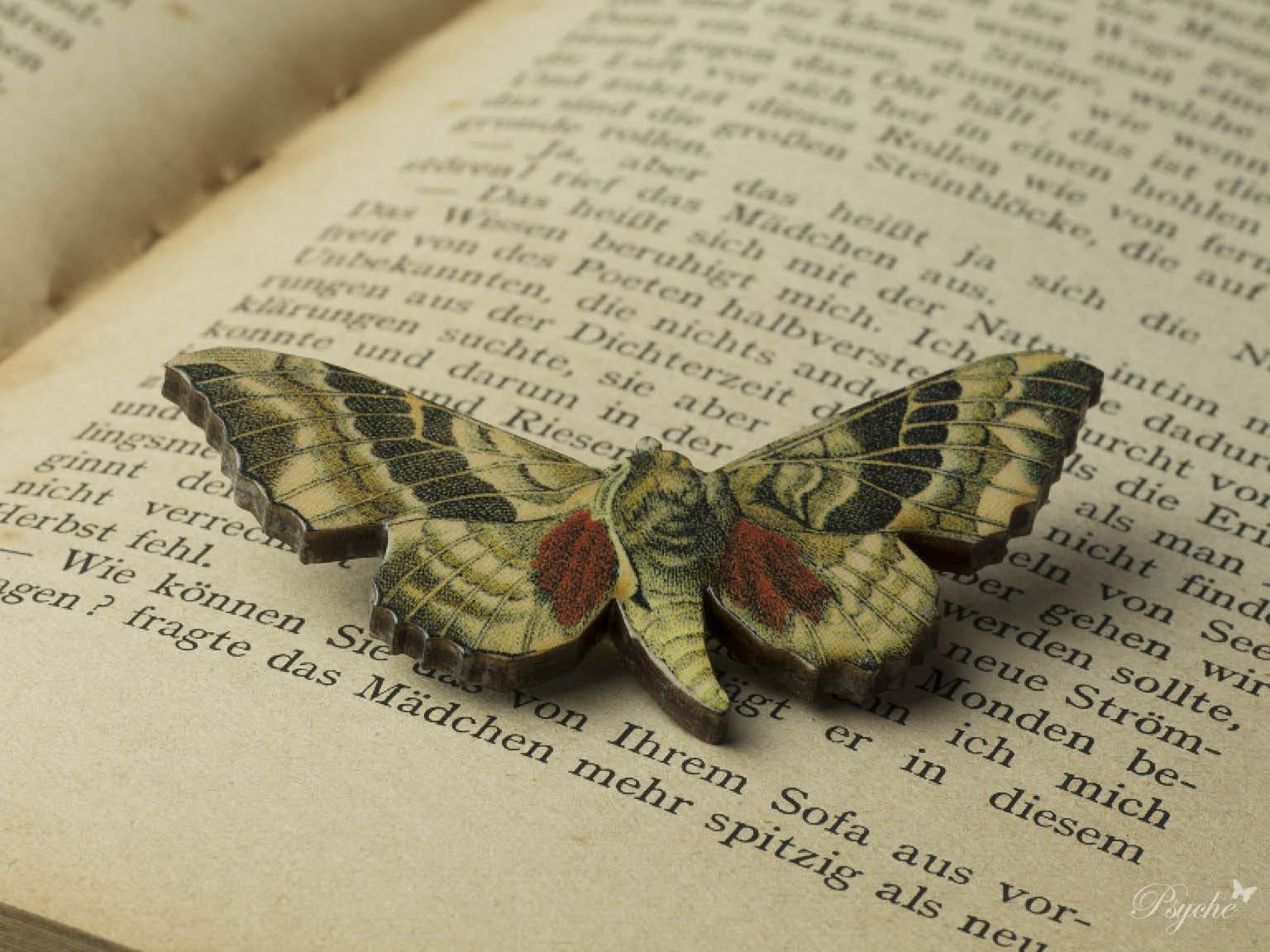 蛾「ポプラノコギリスズメ」のウッドブローチ