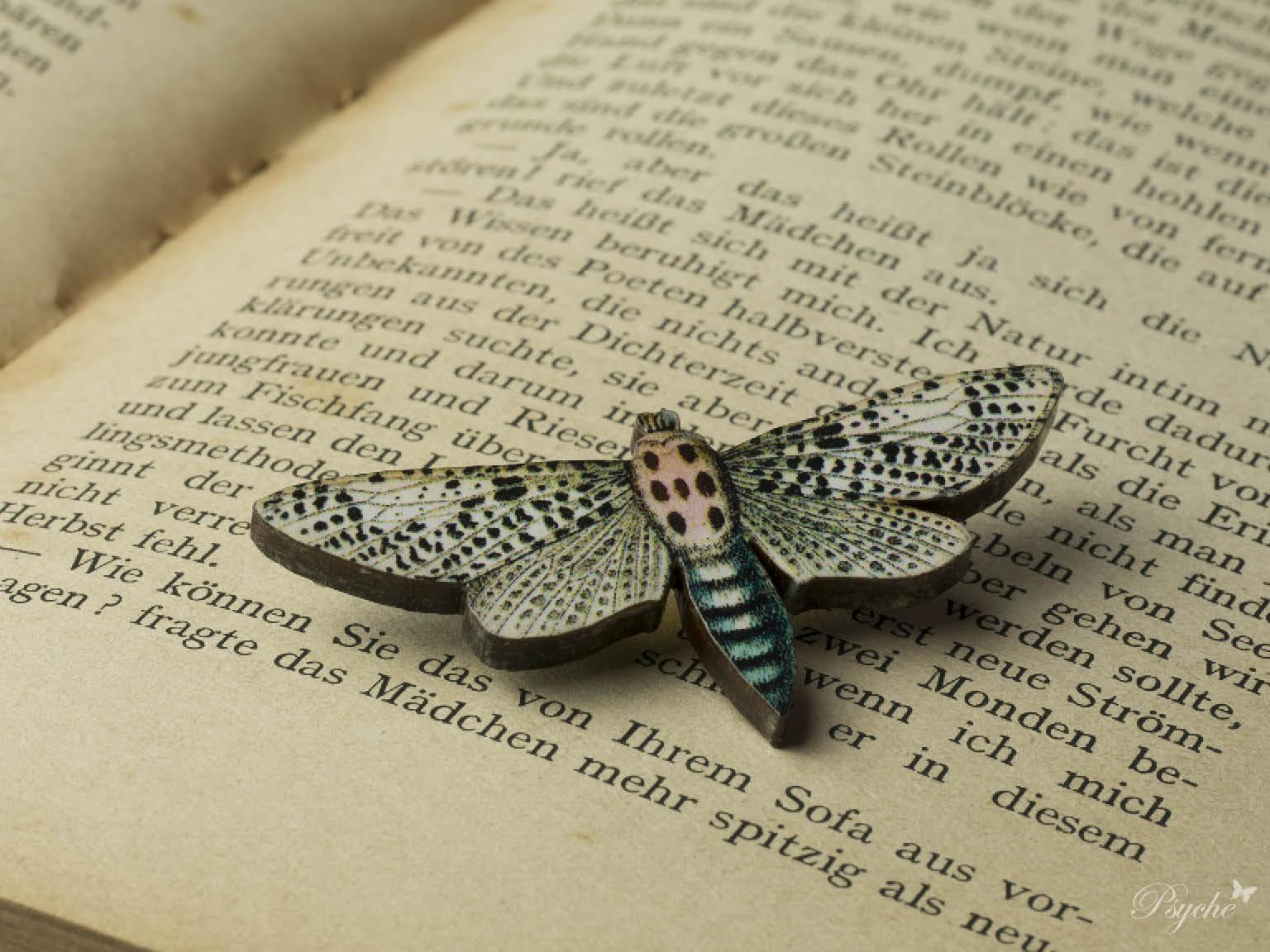 蛾「ヒョウマダラボクトウ」のウッドブローチ