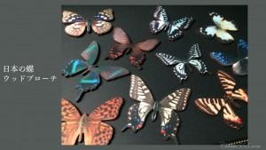 日本の蝶ウッドブローチ