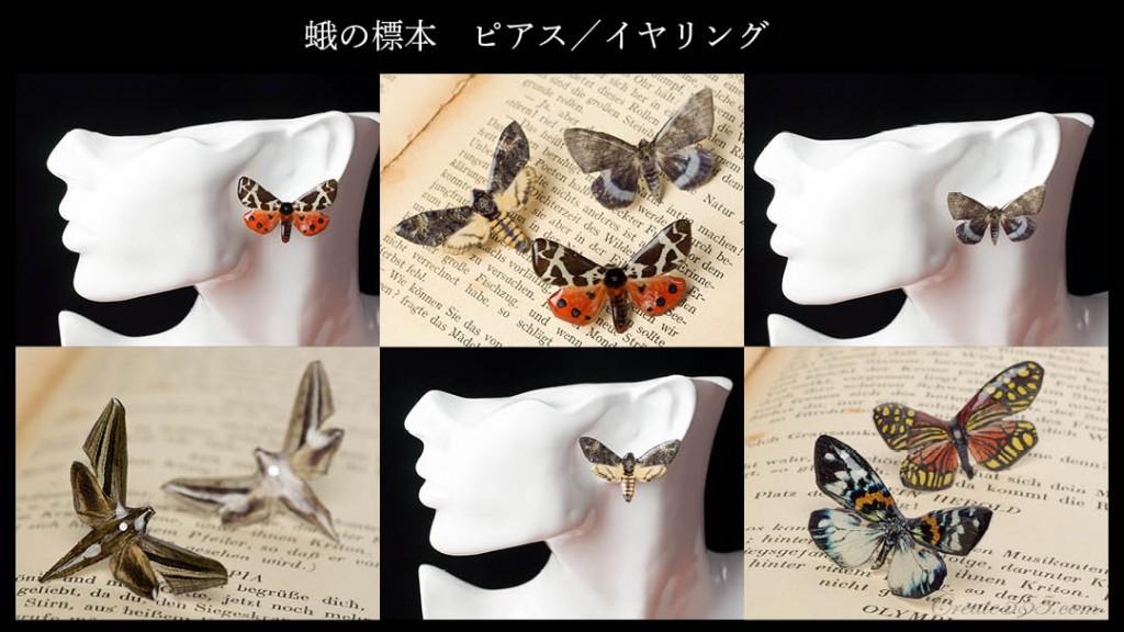 pierced_earring_moth